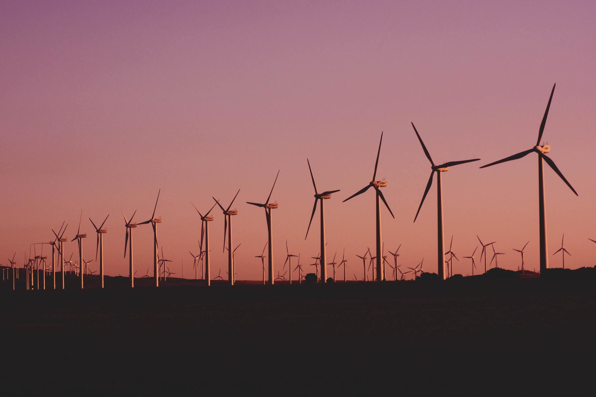 Vėjo jėgainių parkas. Foto